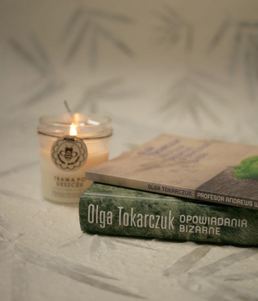 Opowiadania bizarne Profesor Andrews w Warszawie Wyspa Olga Tokarczuk