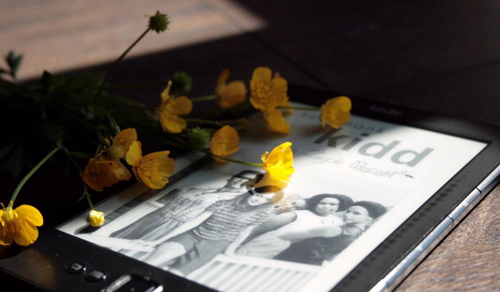 Sekretne życie pszczół Sue Monk Kidd