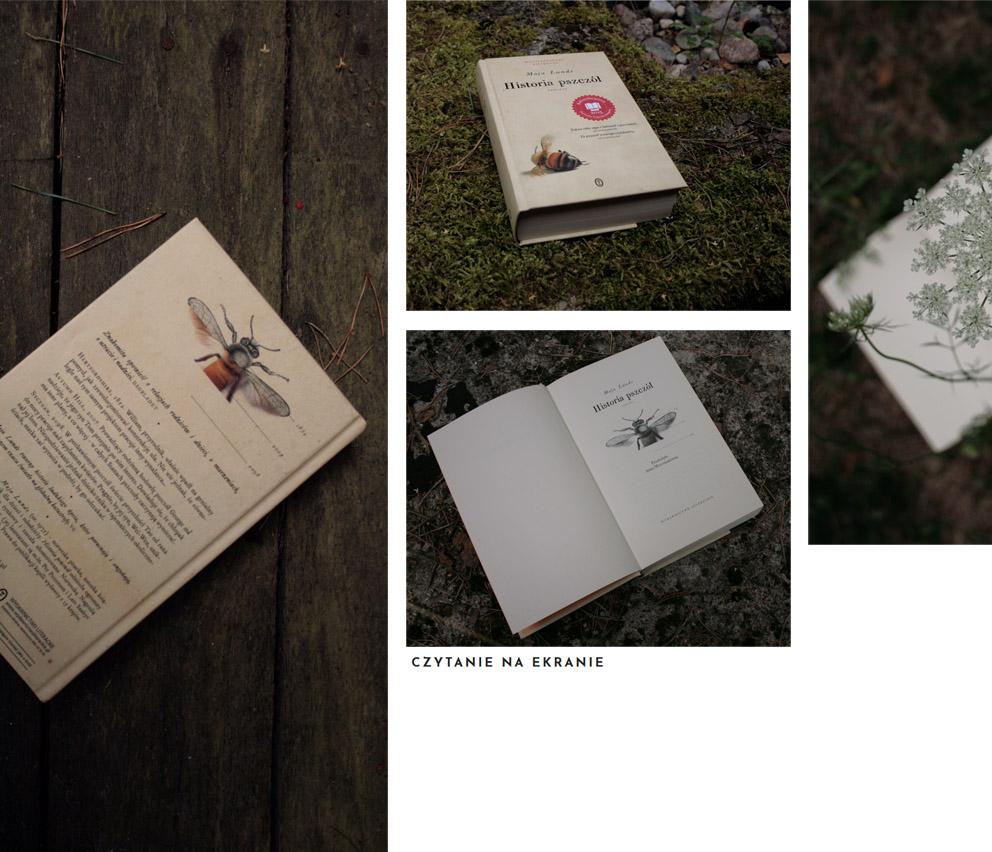 Historia pszczół Maja Lunde